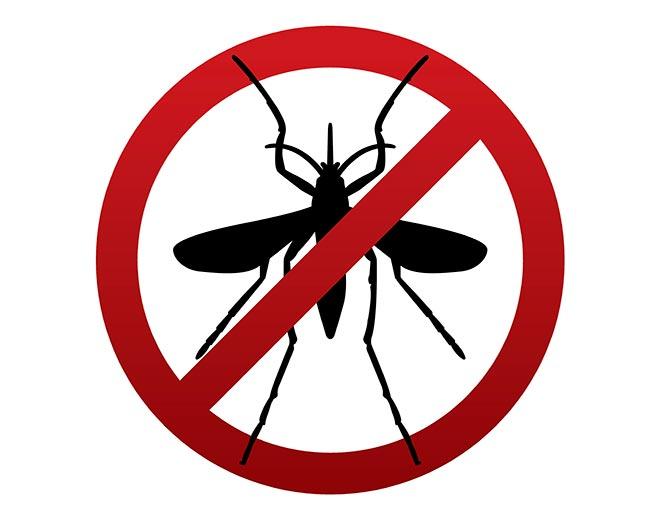 no-mosquitos